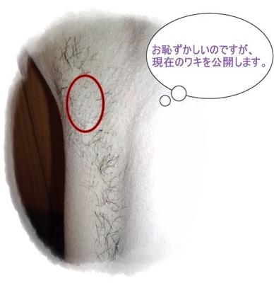 10月5日 修正.JPG